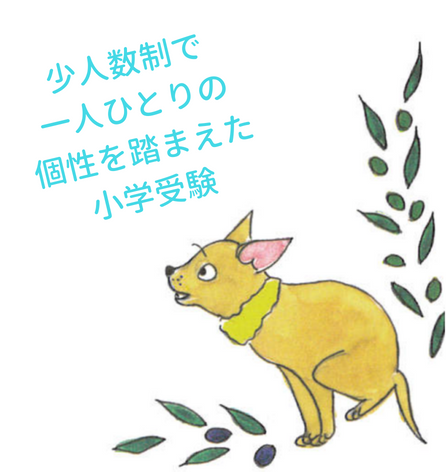 小学受験_PR画面